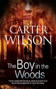 Carter Wilson The boy in the wood cover